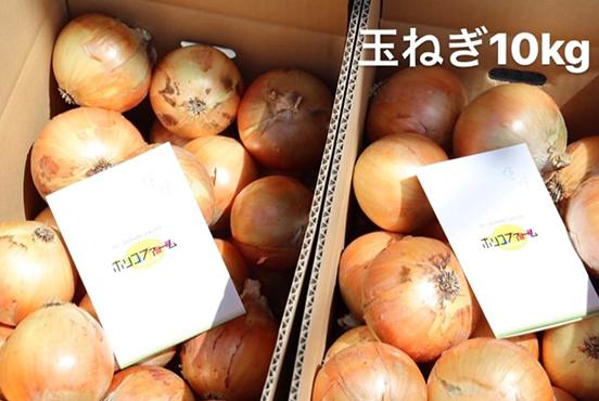 【訳あり】淡路島産玉ねぎ 10kg箱